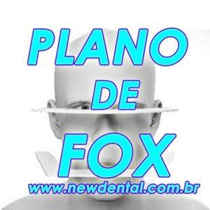 Plano de Fox